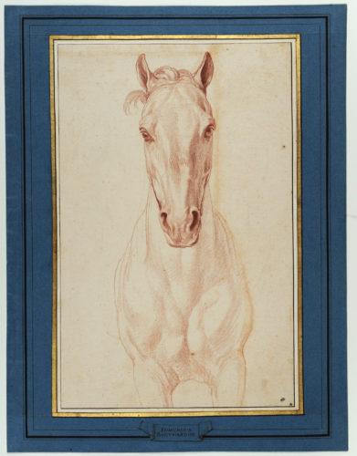 17_Edme Bouchardon, Tête de cheval de face.Etude pour le Monument à Louis XV