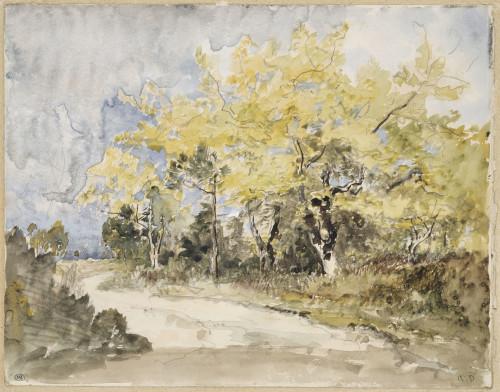 8. Diaz de la Pena_Vue d'une route à la lisière d'un bois ©  RMN-Grand Palais (musée d'Orsay) / Jean-Gilles Berizzi