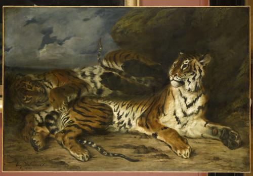 9_Eugène Delacroix, Jeune tigre jouant avec sa mère-jpg