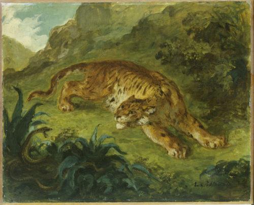 Eugene Delacroix, Tigre et serpent – BPK, Berlin, Dist. RMN-Grand Palais Elke Walford