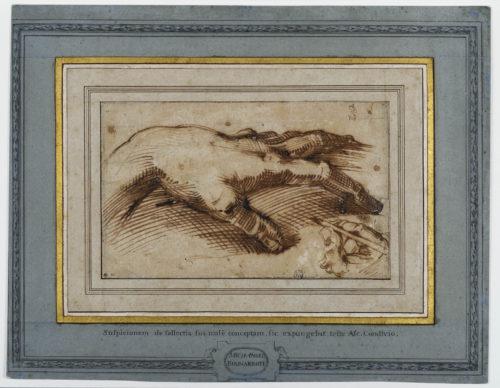 8- Passarotti, Etude d'une main en dessinant une autre © Musée du Louvre, dist- RMN – Grand Palais -Suzanne Nagy-jpg