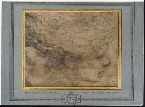 3- Raphaël, Tête d'ange © Musée du Louvre, dist- RMN – Grand Palais-Suzanne Nagy-jpg