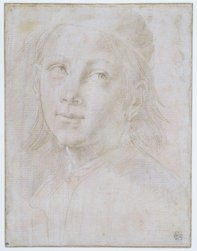 2- Lorenzo di Credi Tete de jeune homme coiffe dune calotte  Musee du Louvre dist- RMN – Grand Palais  Suzanne Nagy-jpg