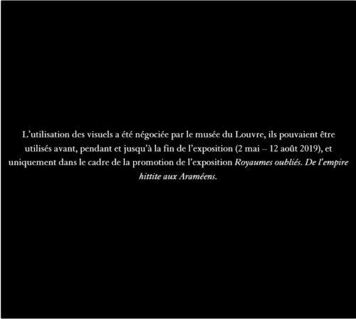 11.Tête colossale de Katuwas souverain de Karkemish © Musée du Louvre, Dist. RMN Grand Palais / Philippe Fuzeau-jpg
