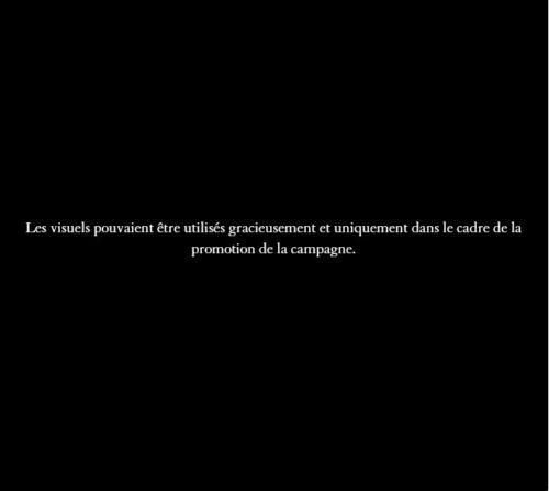 L'arc du Carrousel © 2018 musée du Louvre / Olivier Ouadah-jpg