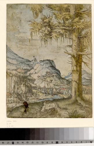 Albrecht Altdorfer, Paysage au grand épicéa © The Albertina Museum, Vienna–jpg