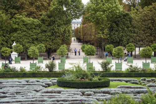 Le jardin des Tuileries4 c 2019 musee du LouvreOlivier Ouadah-jpg