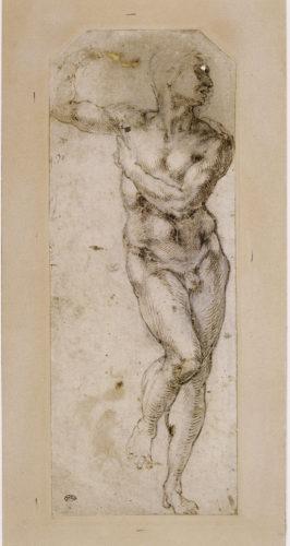 20- Michel-Ange- Homme nu debout la tete de profil vers la droite- Paris musee du Louvre  RMN Grand Palais- Musee du Louvre- Michele Bellot-jpg